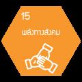 icon แม่บท-15-1
