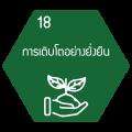 icon แม่บท-18-1